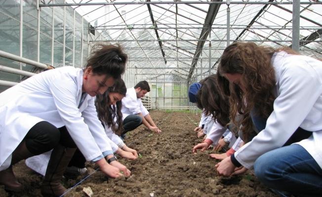Ziraat Mühendisleri, tarlada ve çiftlikte mesleği öğreniyor