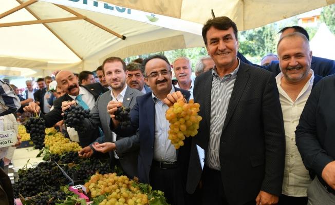 Bursa'nın En Güzel Üzümleri Belli Oldu