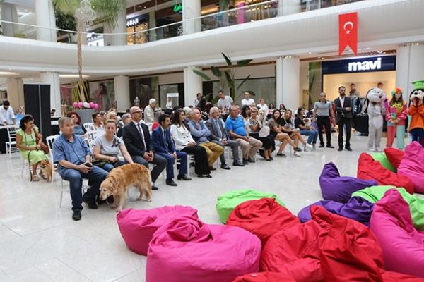 Bursa'nın ilk pati festivali başladı