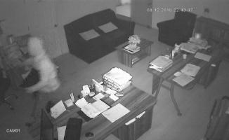 Okul faresi iş yerlerine girerken kameralara yakalandı