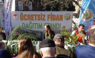 Bursalılara 30 bin ücretsiz fidan